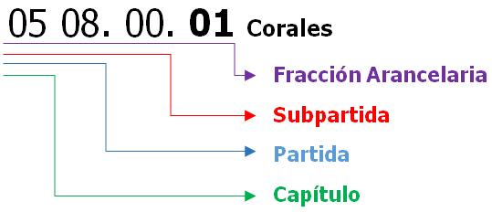 Resultado de imagen para clasificación arancelaria
